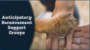 New Anticipatory Bereavement Groups