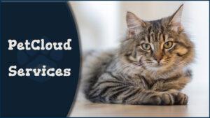 PetCloud Services