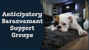 Anticipatory Bereavement Support Groups