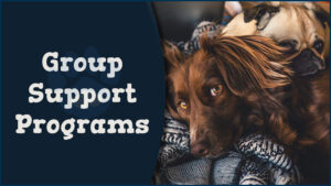 Group Support Programs