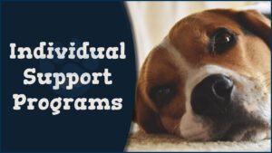 Individual Support Programs